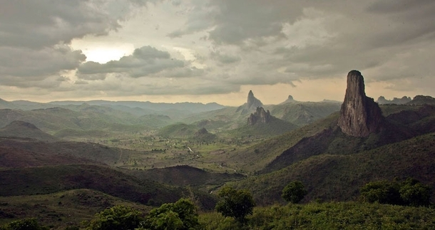 Country Focus - Cameroon