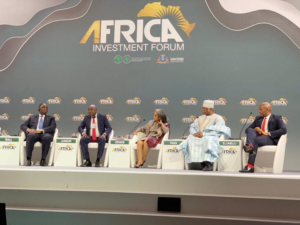 Tony Elumelu Africa Investors Forum SA