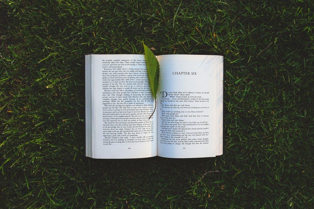 long weekend ideas- read a book