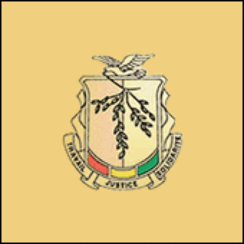 guinea-logo